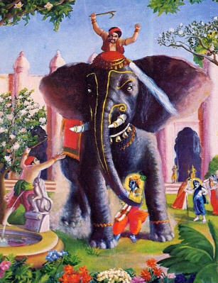 The Caretaker Provoked The Elephant To Try To Kill Lord Krsna