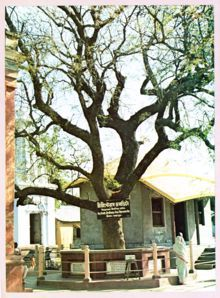 Birthplace of Lord Caitanya