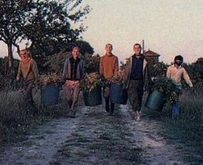 Devotees in Farms