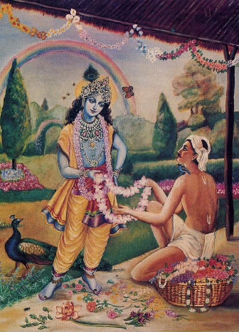 The Evolution of the Soul Culminates in Krsna Consciousness