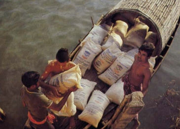 Devotees Battled The Ganges for 8 Hrs To Delivers Of Rice
