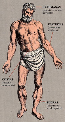 The Anatomy Of The Social Body