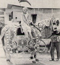 Young Devotee Rode Horses in The Parade Celebrating The Openign New Templejpg