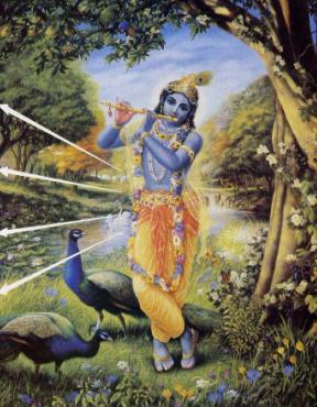 Supreme Lord Krishna