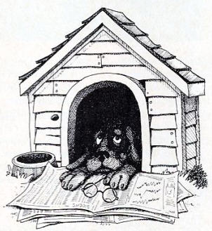 Who's In The Doghouse Now