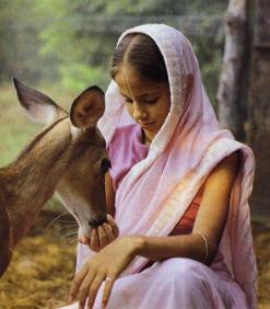 Ananda Dasi Feeds The Deer