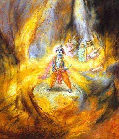 Can God Do That?  by Mathuresa Dasa