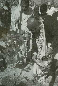 Gopala Krsna Goswami
