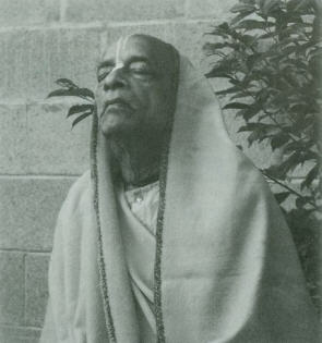 Eight Prayers Pleading for Srila Prabhupada's Service by Jaya Balarama Dasa