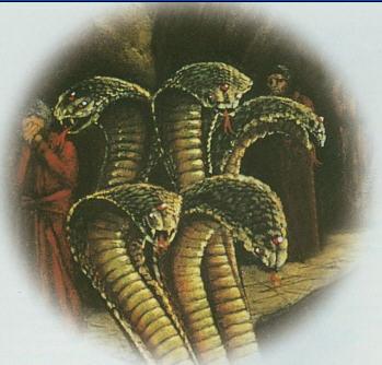 Yam Dutt Snake