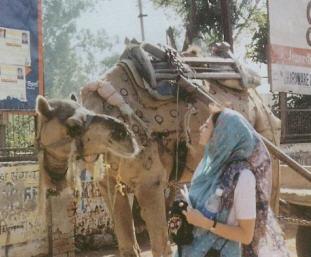 Making Friends With Camel on vrndavana