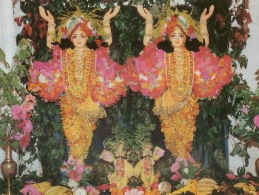 Sri Sri Gaura - Nitai