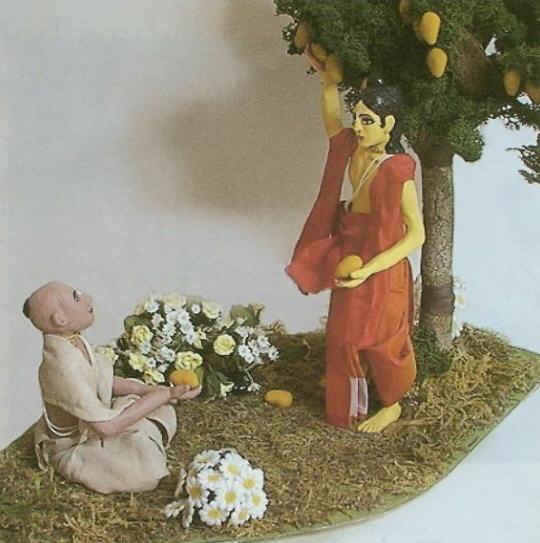 Back To Godhead - Nimai Grows a Mango Tree