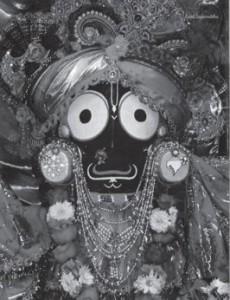 Kindly Be Visible by Satsvarupa Dasa Goswami