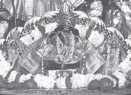 Sri Radha Damodar