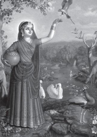 The Glories of Tulsi Puja