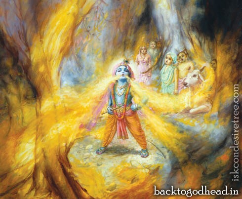Lord Krsna Swallows a forest fire - Back To Godhead