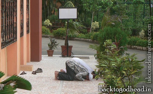 muslim visitor bow for prayers - Back To Godhead