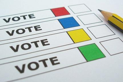 General Elections 2014 by Syamananda Dasa