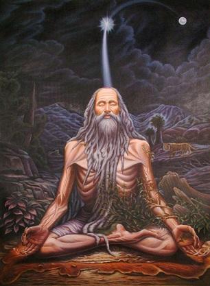 From Faith to Determination by Vraja Bihari Dasa