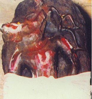 Kroda (Varaha) Nrsimha