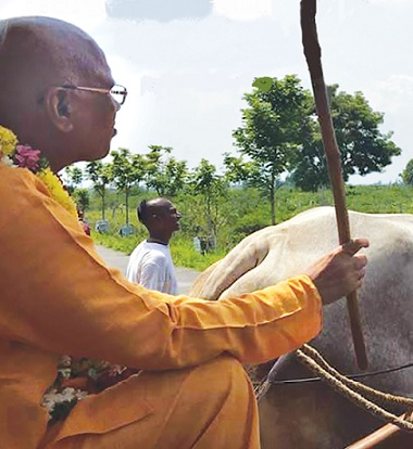 The Forty-Year History of ISKCON Padayatra
